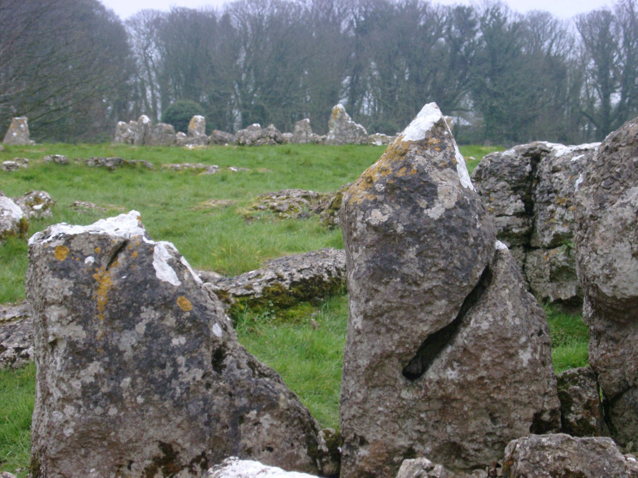 Stone circle or natural granite megaliths in a green field conceptual of pixies , fairies and witchcraft