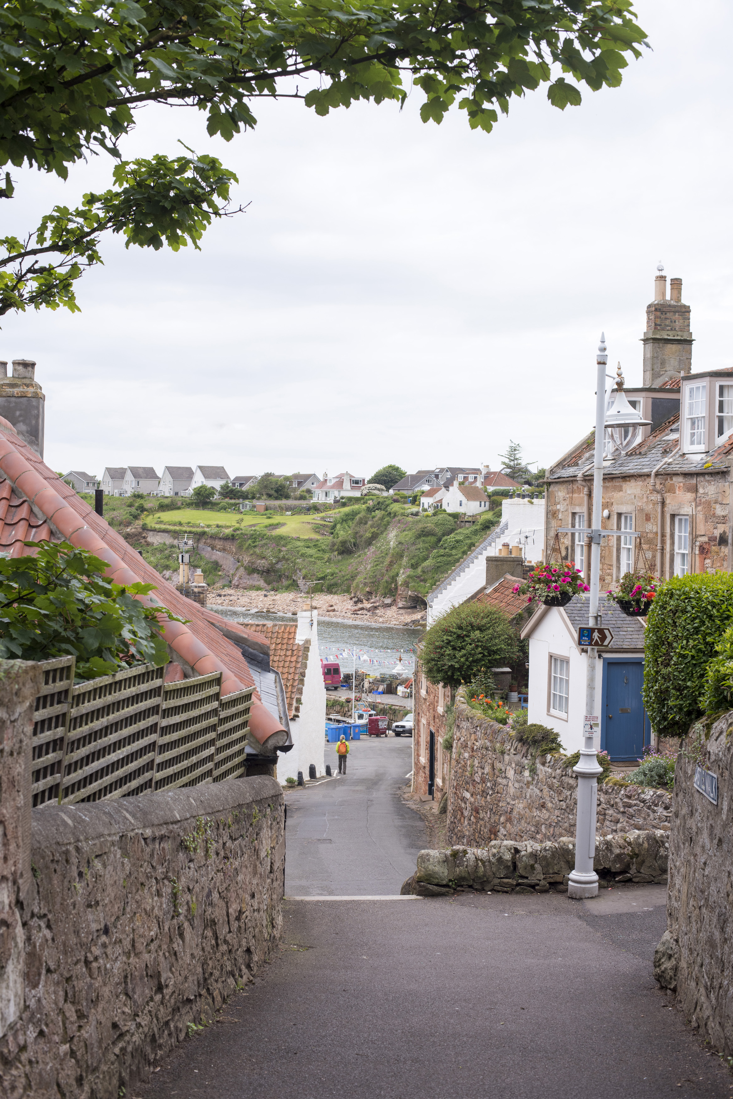 Down street view of old historic buildings and well manicured hedges of Crail in Scotland