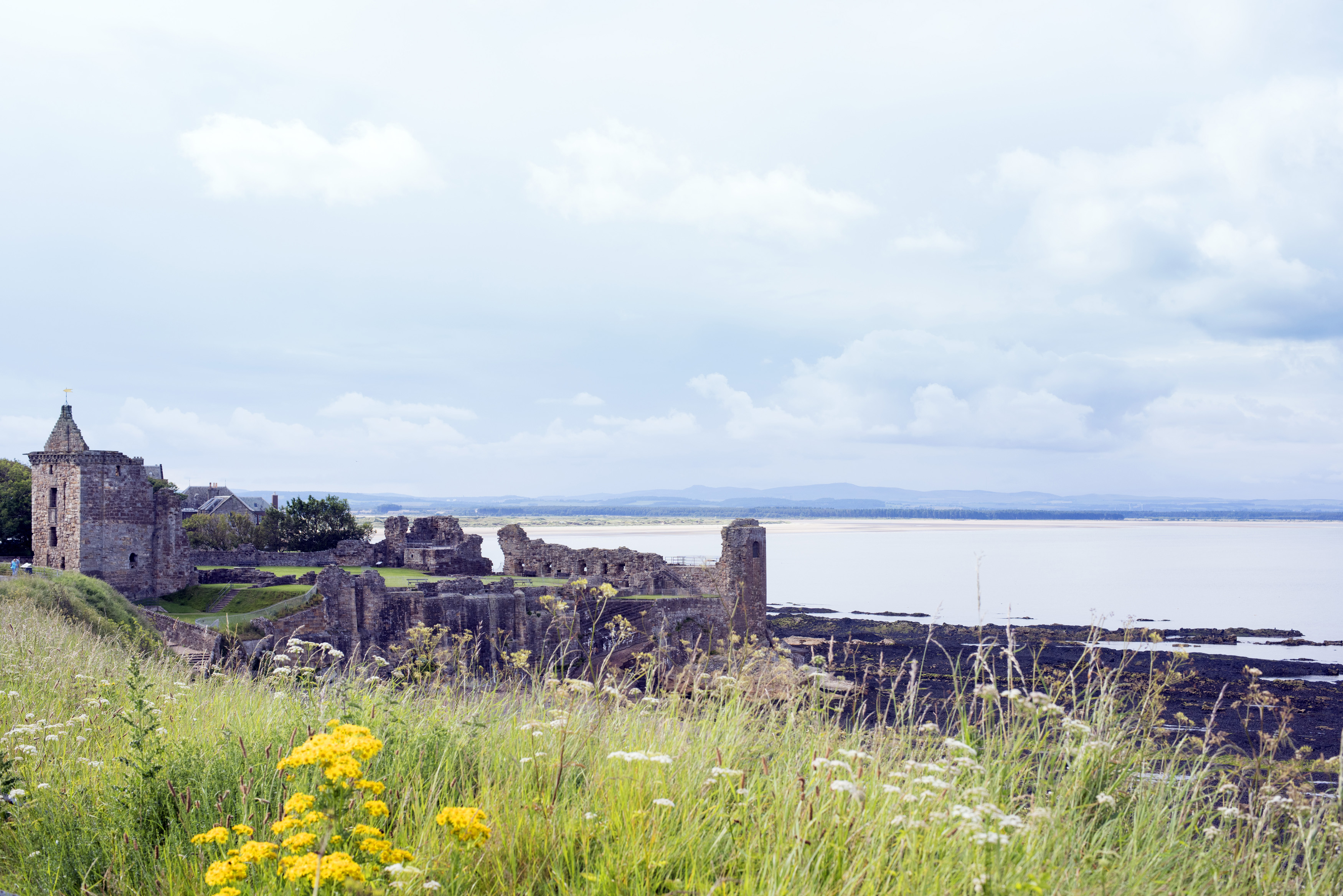 View on old ruins of Saint Andrews cathedral from grassy knoll with wildflowers and mountains in the far distance