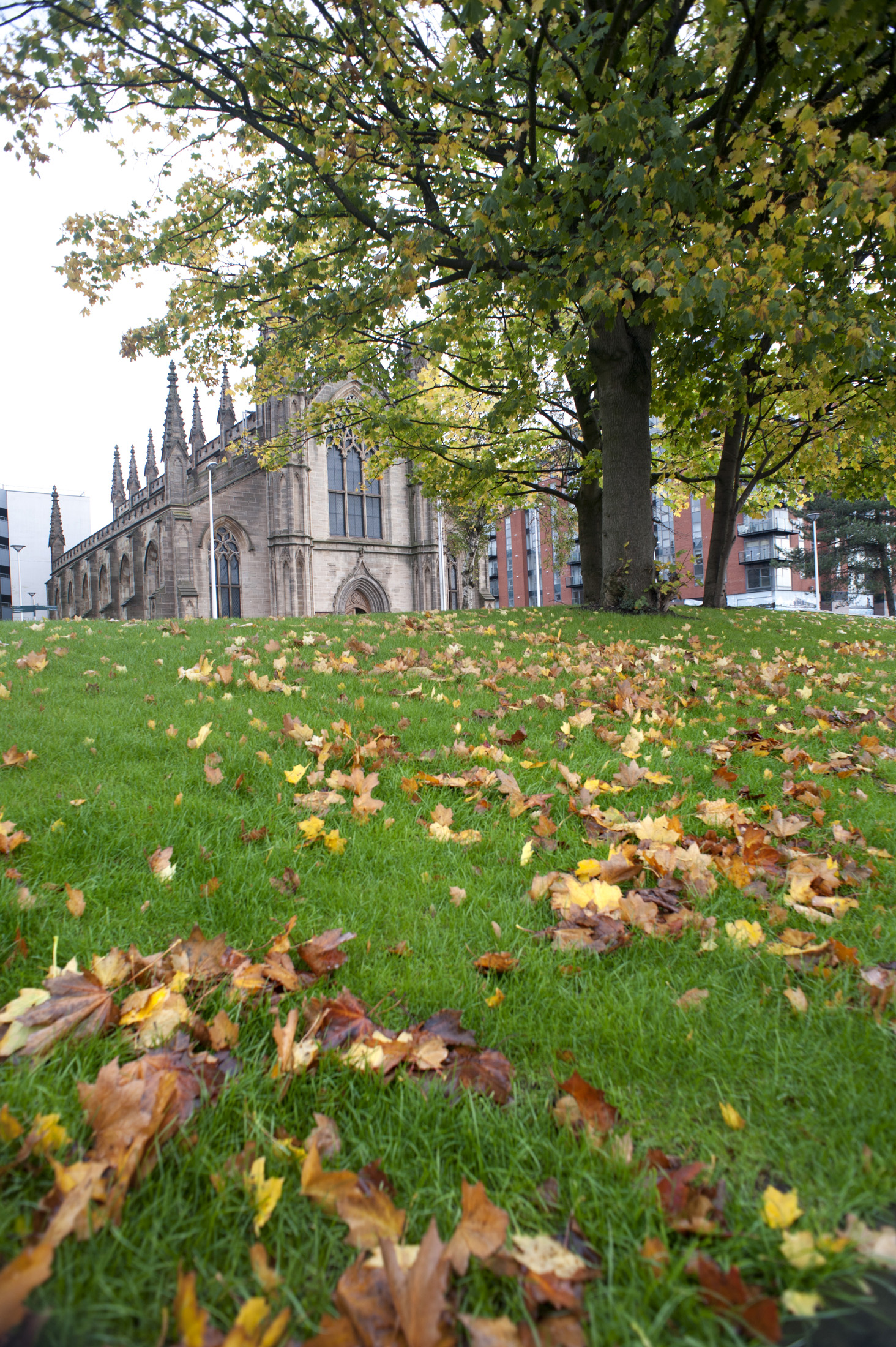 St Andrews Cathedral in Glasgow viewed over lush green grass strewn with fallen autumn leaves