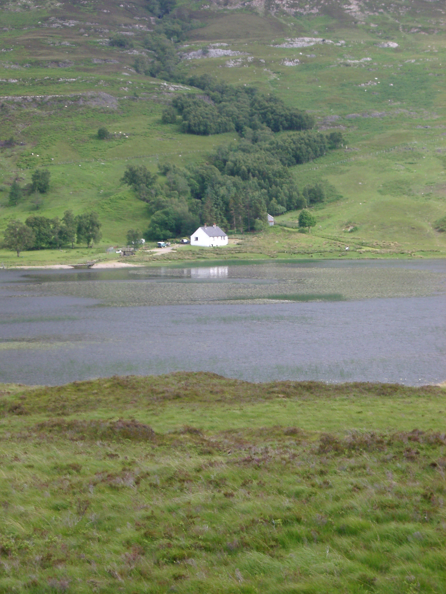 Distant view of a remote whitewashed house on the shores of loch in Scotland in a lush tranquil landscape