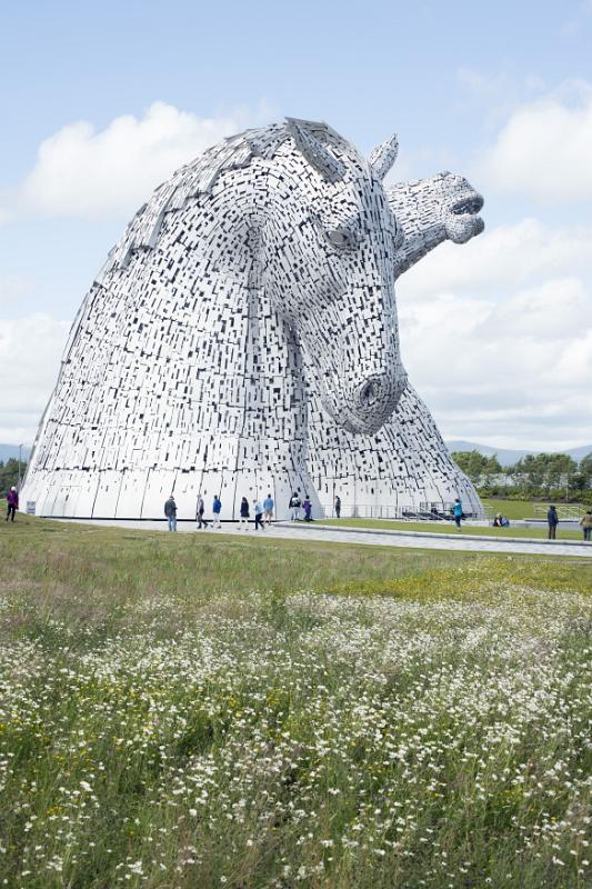 Free Stock Photo Of Kelpies Horse Monuments In Grassy