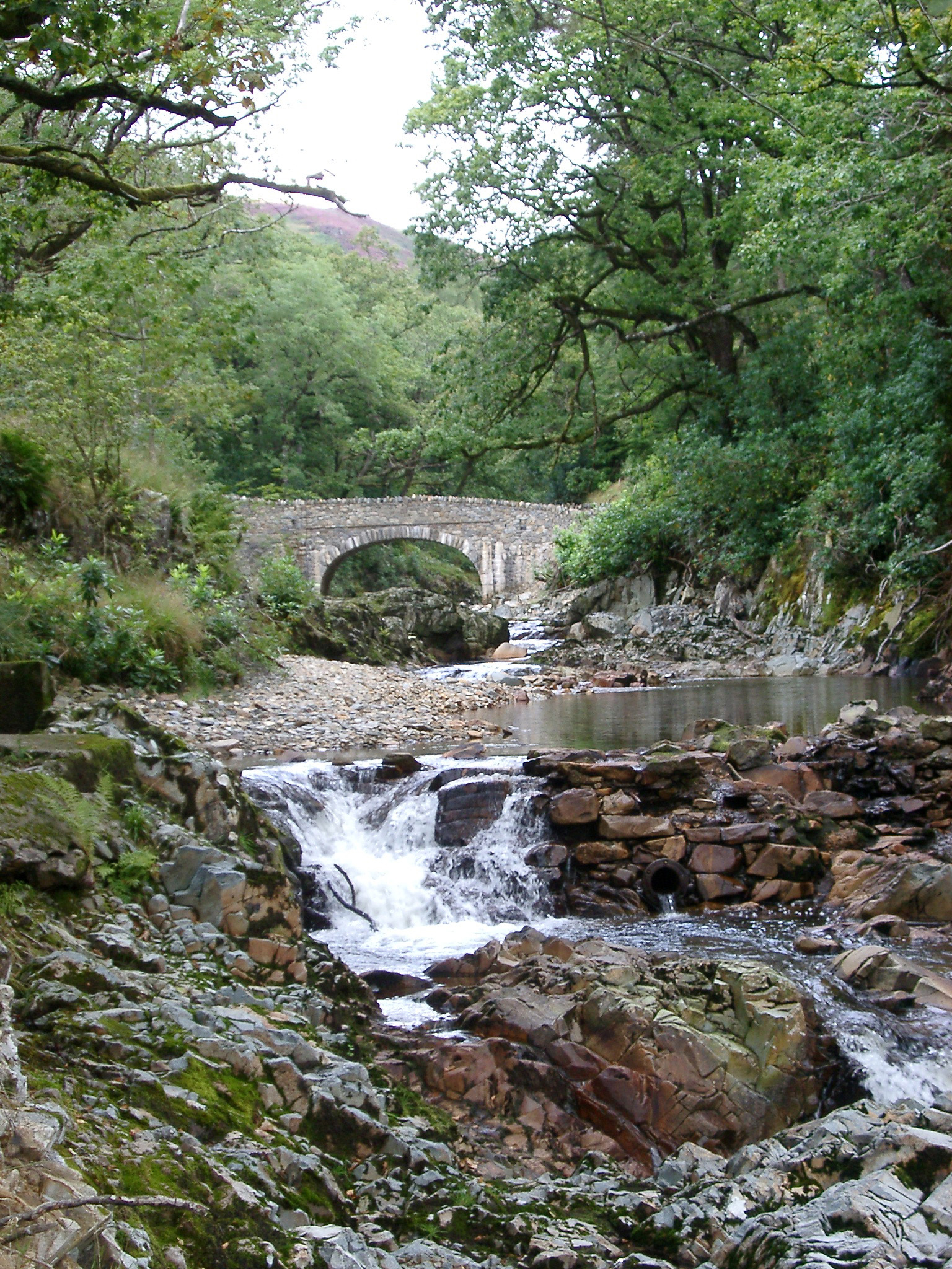 Small stone arch bridge spanning a fast flowing stream with white water in lush green woodland