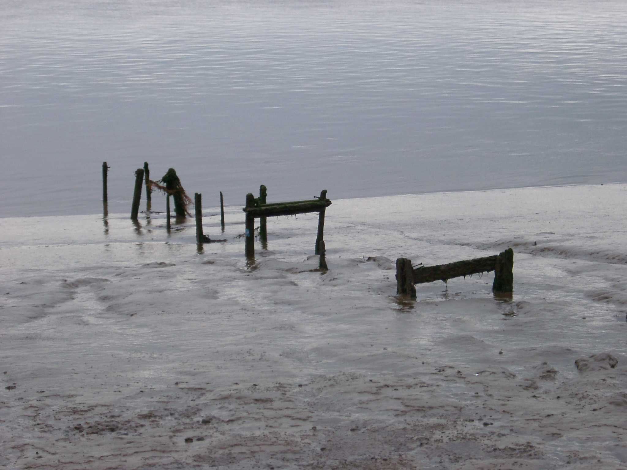 Atmospheric background view of an estuary beach with the old remnants of wooden posts sticking up out of the sand at the waters edge
