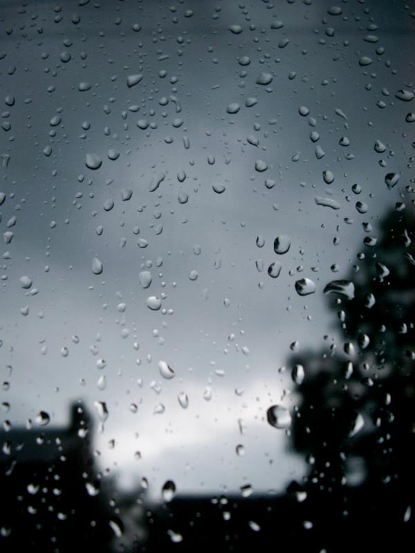 Free Stock Photo Of Raindrops Beading On A Glass Window
