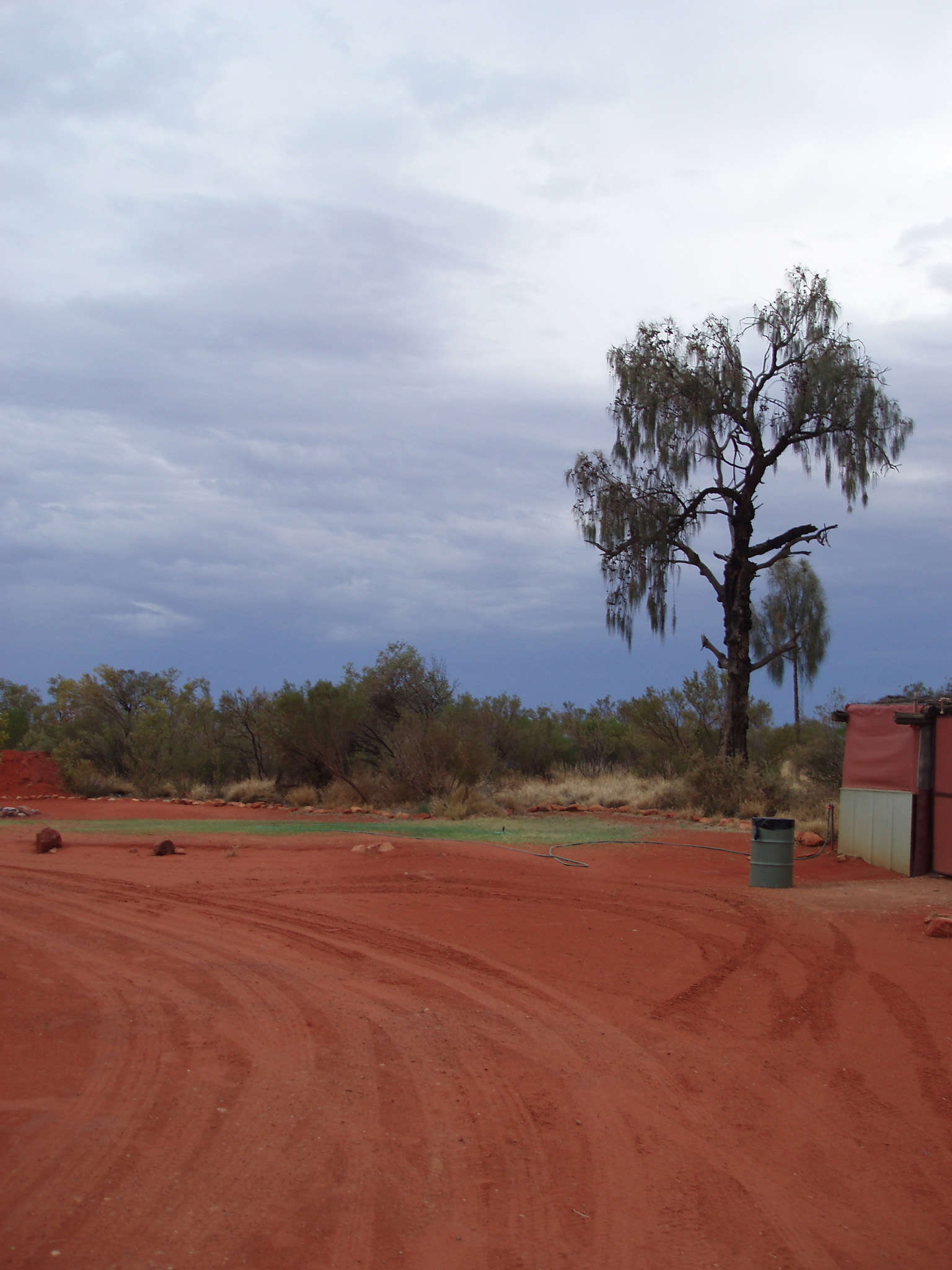 Red Landscape at Kings Creek Station in Australia with Tall Green Trees Afar. A Good Place for Camping.