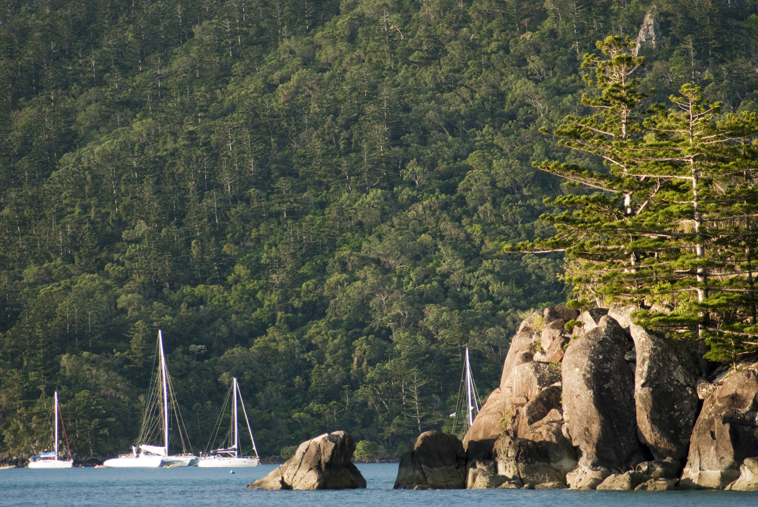 Yachts moored in a protected harbour surrounded by beautiful coastline and lush, rainforest covered mountains in the Whitsunday Islands, Australia.