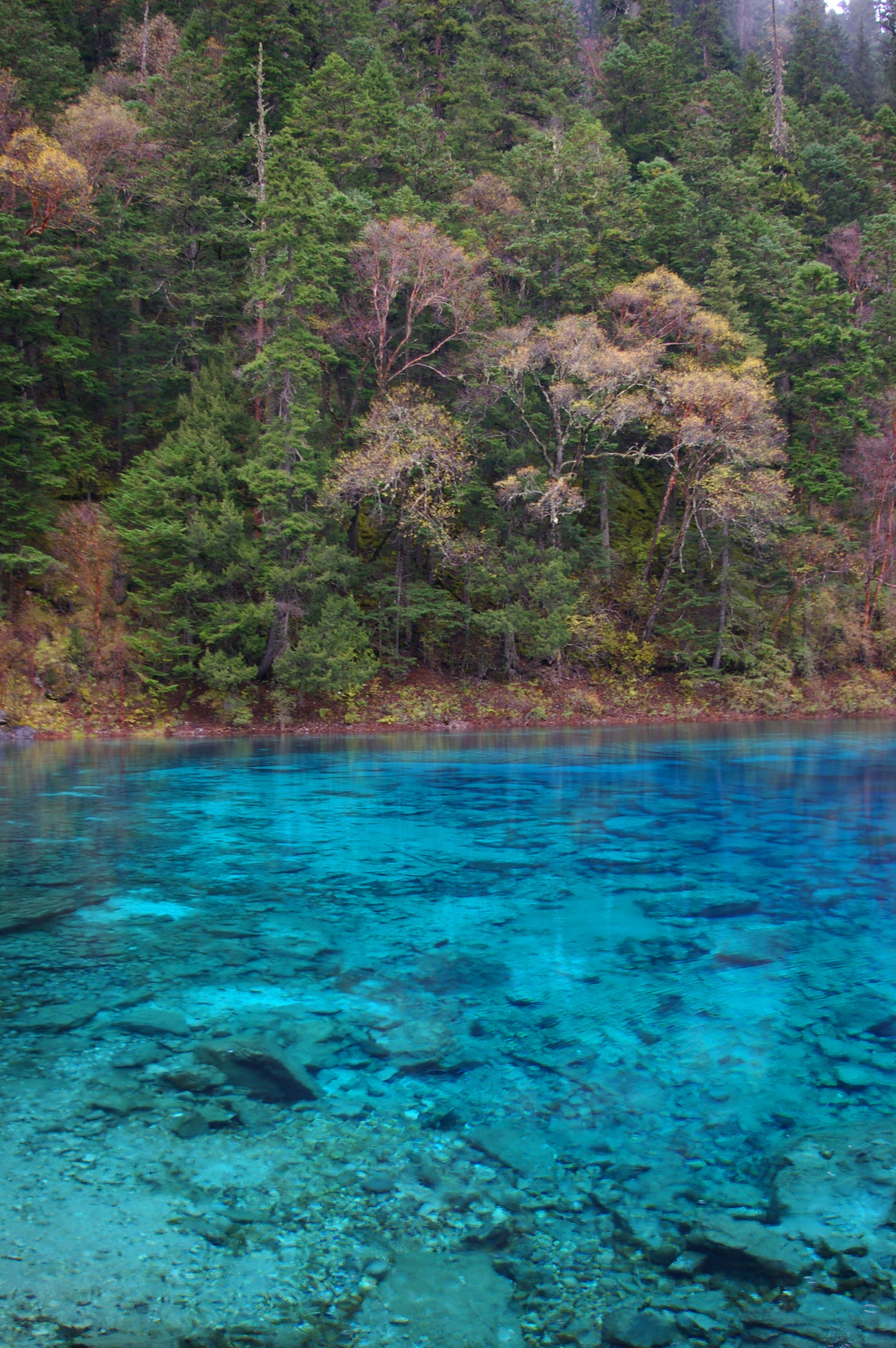 Serenity at Beautiful Clear Cyan Blue Lake with Trees on Sides Located in China.