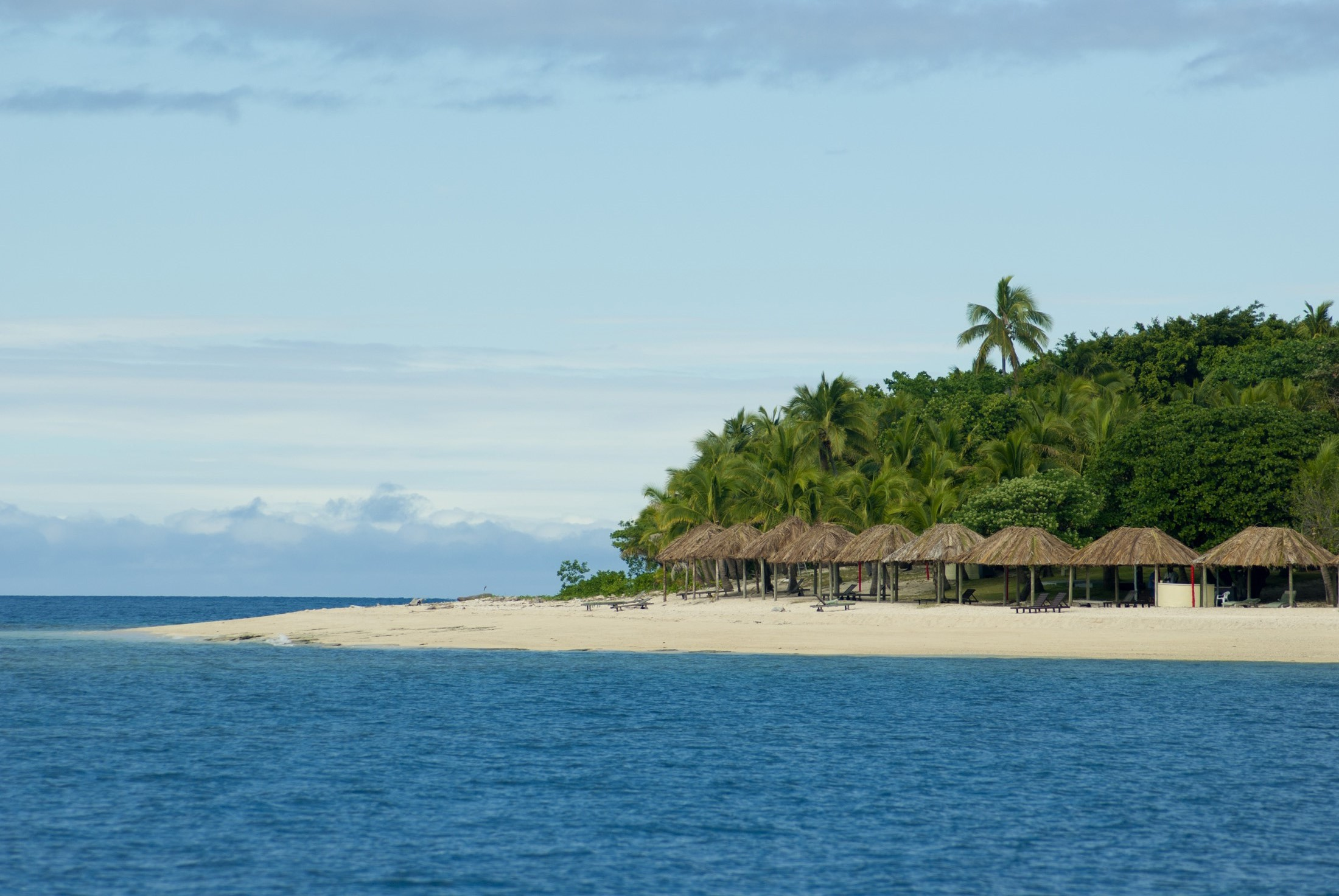 Thatched traditional beach umbrellas on Bounty island, Fiji, on a sunny sandy tropical beach with palm trees