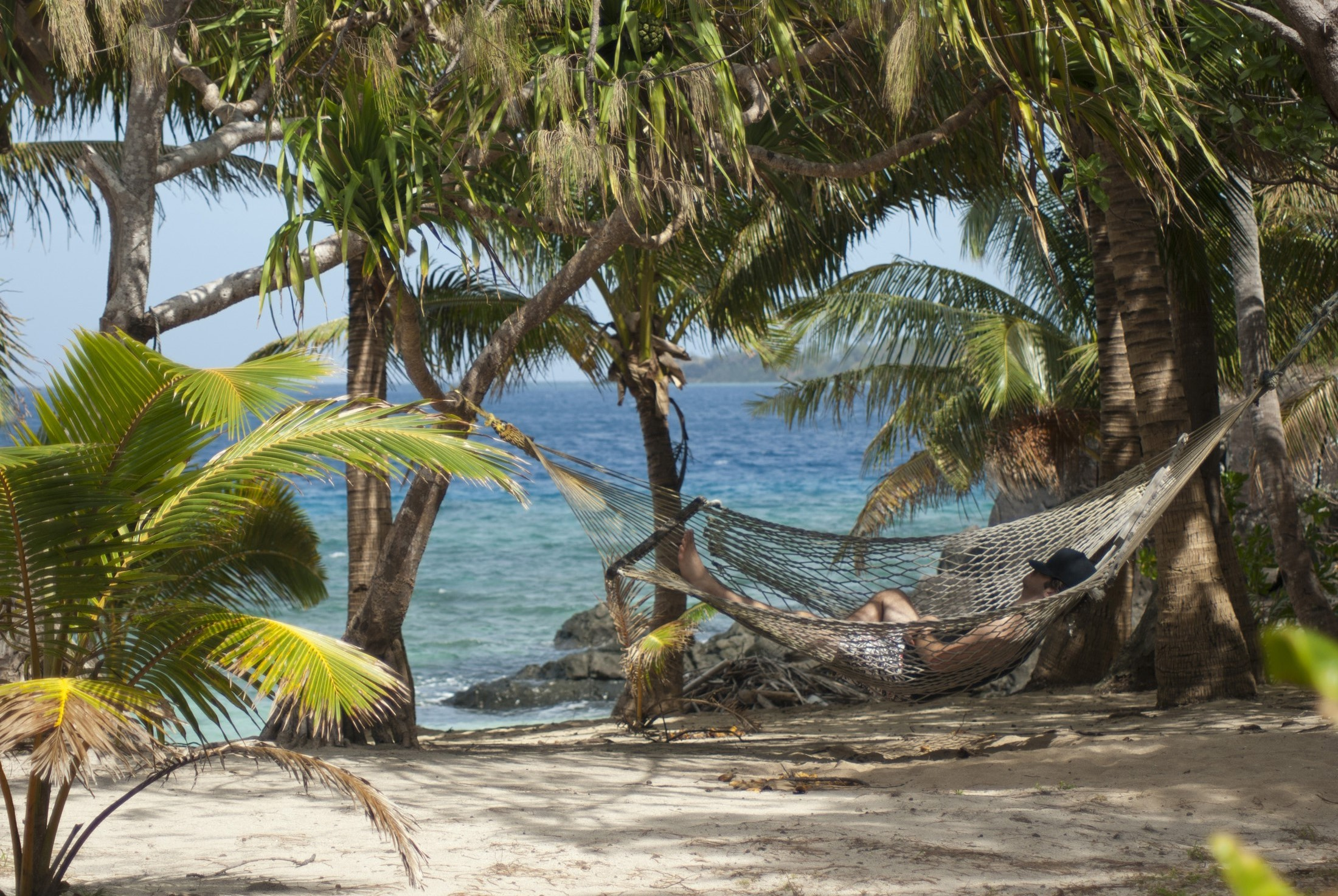 Relaxing in a hammock slung between two palm trees overlooking an idyllic tropical beach and ocean