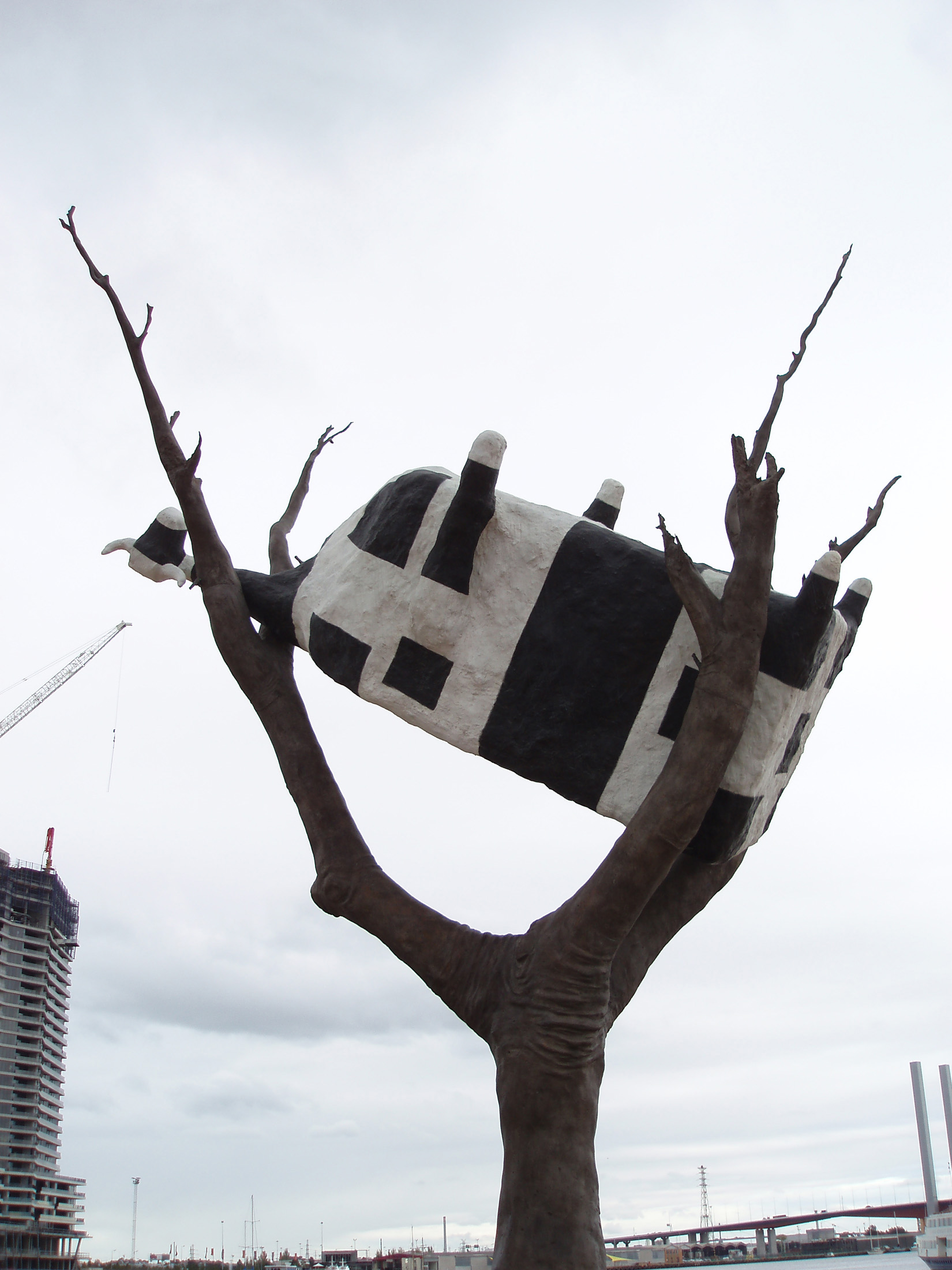 Close up of Famous Landmark of Black and White Cow on an Old Leafless Tree Sculpture in Melbourne Docklands.