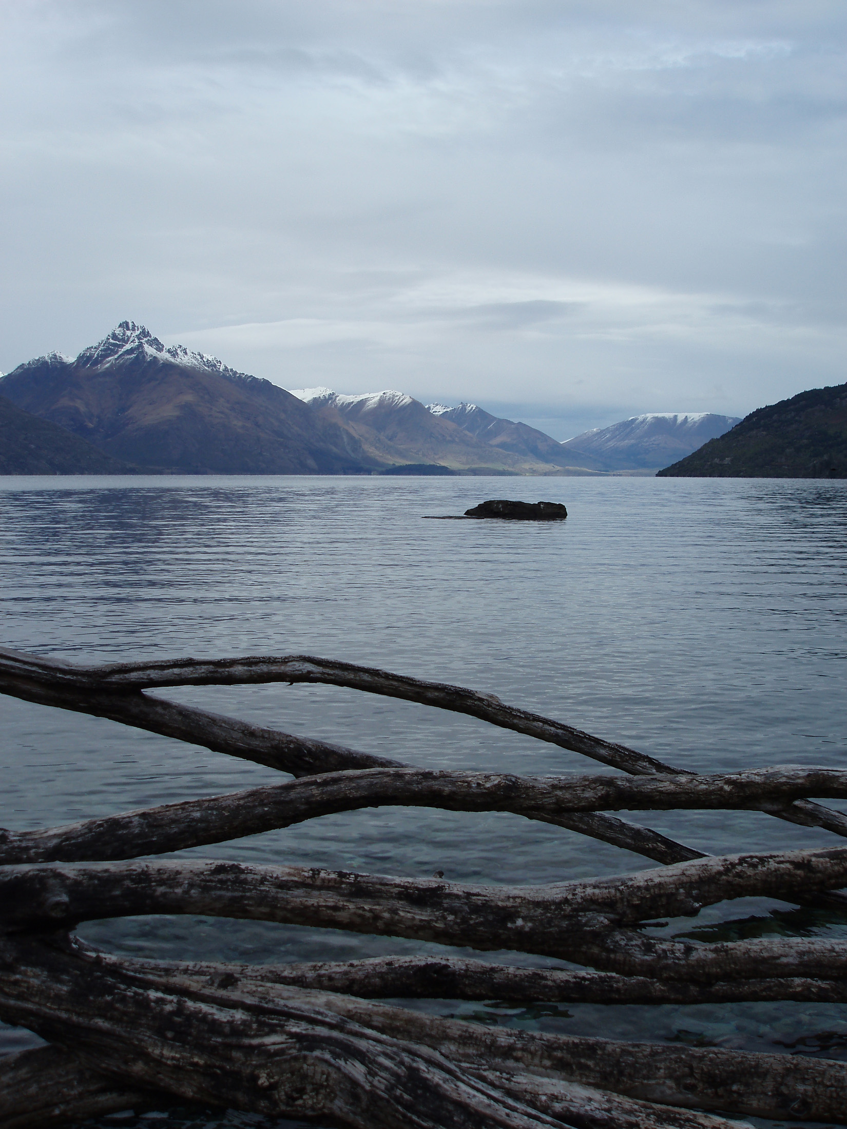 a calm view of lake wakatipu and distance mountains iwth driftwood in the foreground