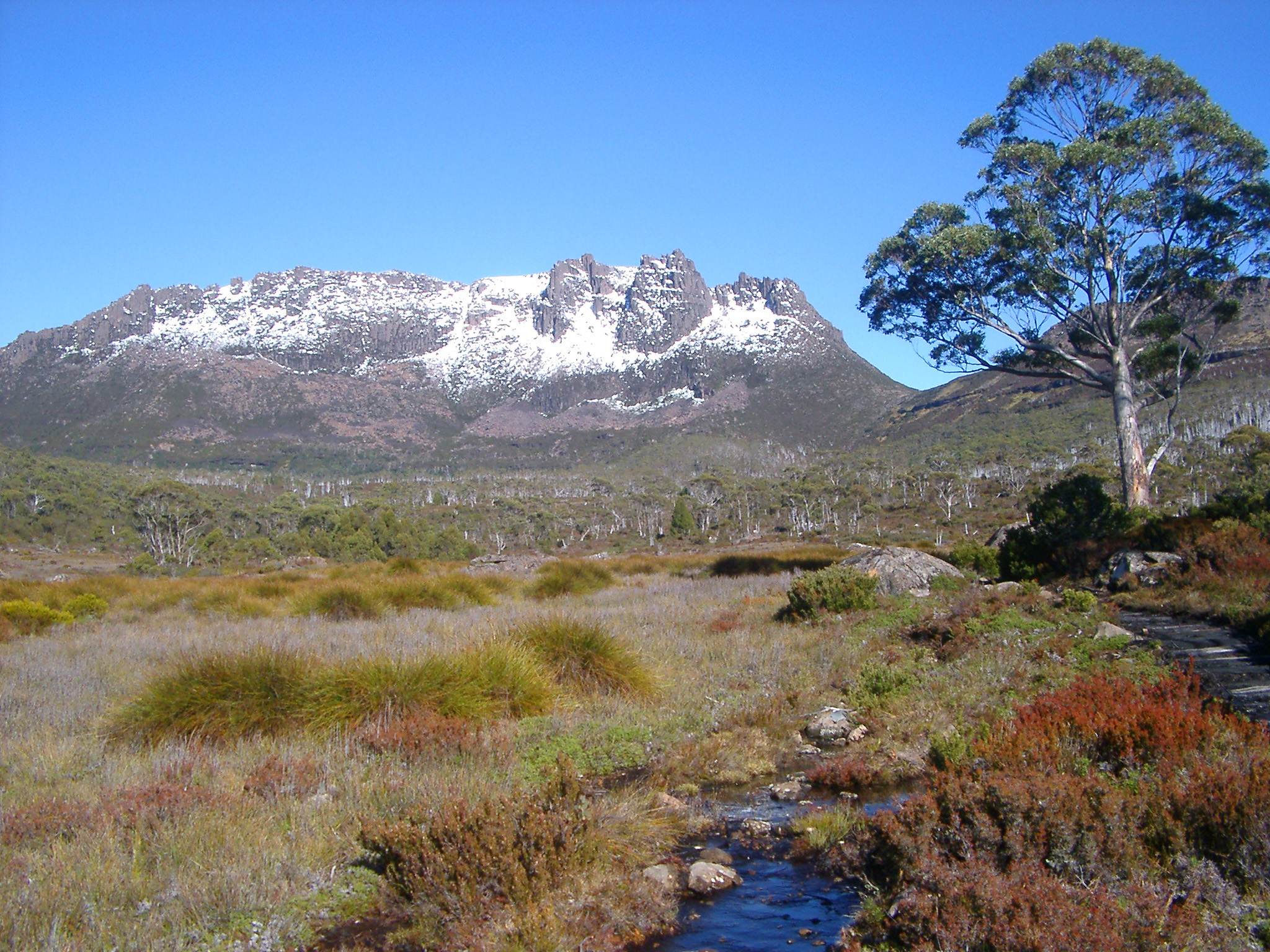 View Looking Towards Snow Capped Mount Ossa, Cradle Mountain-Lake St Clair National Park, Tasmania