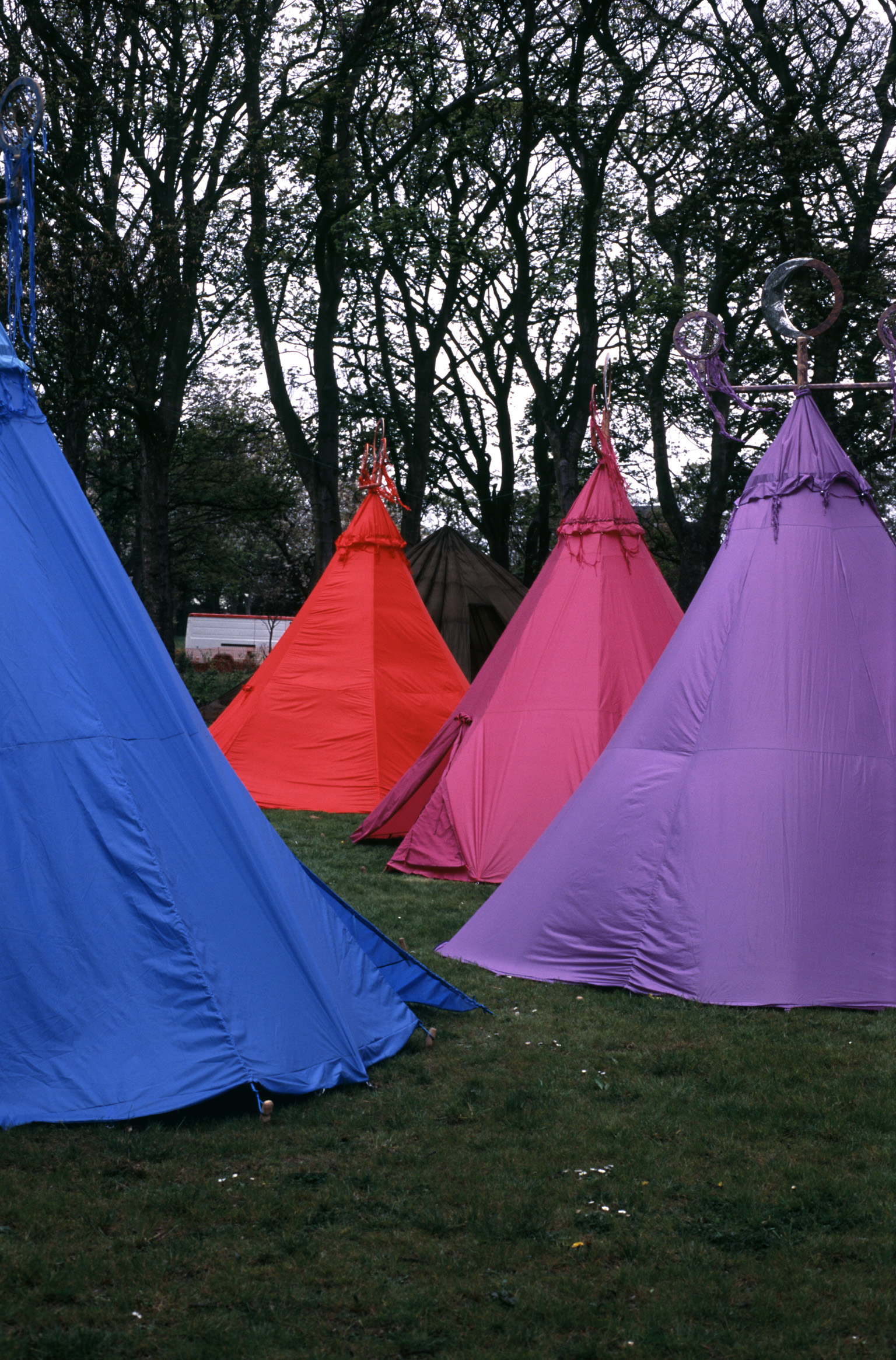 Four Colorful Tents of Blue, Red, Pink, and Purple Set Up in Grassy Clearing