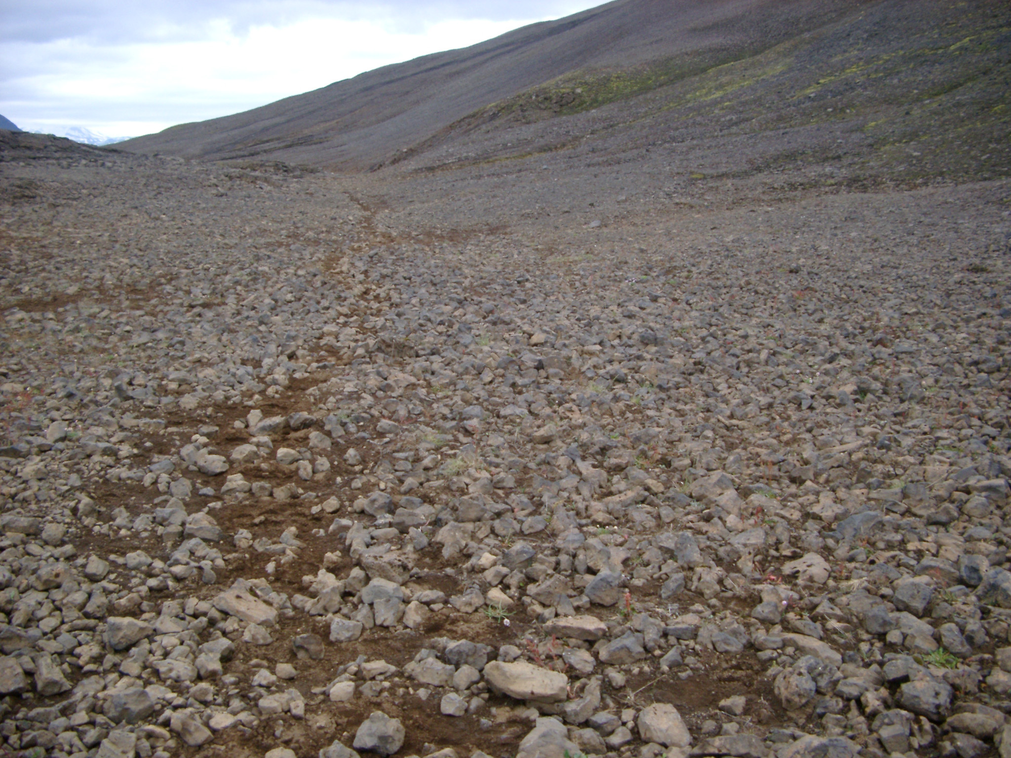 Path Through Rocky Iceland Terrain in Mountainous Area