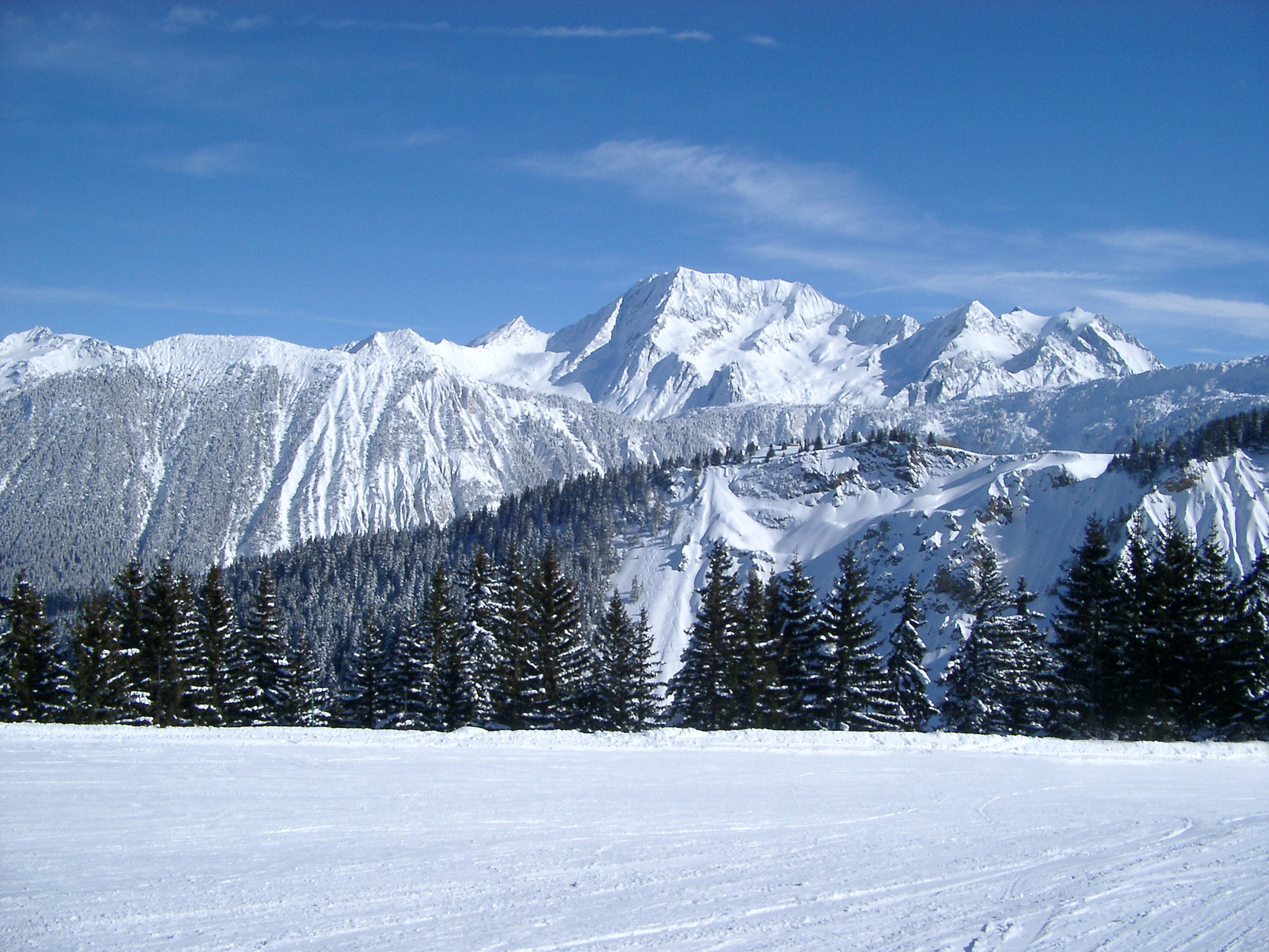 Beautiful Spot of Huge Mountains, Fir Trees and Wide Field Filled with Snow on Winter Holiday.