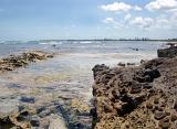 Cardiff Reef Beach California